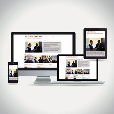 Alfonso Molina web site